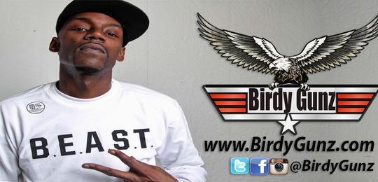 https://birdygunz.com/wp-content/uploads/2018/10/Birdy-Banner.jpg