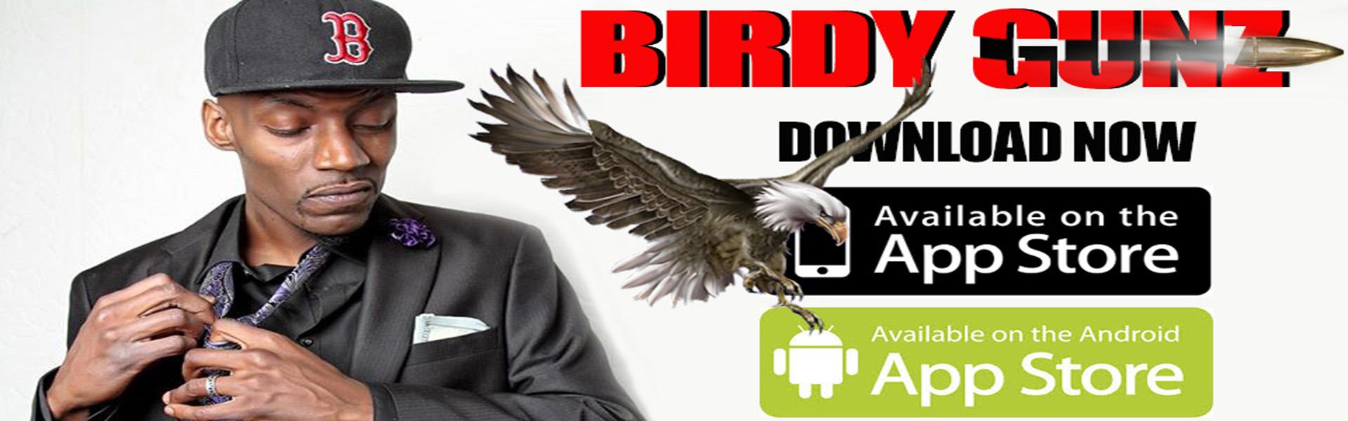 https://birdygunz.com/wp-content/uploads/2018/10/birdy-01.jpg